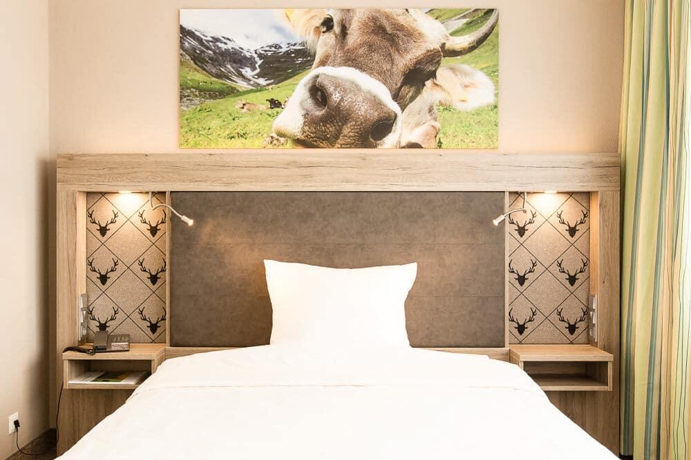 Premium-Zimmer, Kuh über dem Bett, Hotel Bavaria Oldenburg